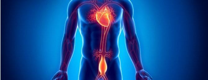 Aneurizmi Aortal i Abdomenit (AAA)