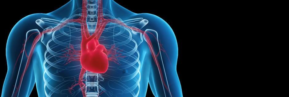 Angina: Simptomat, Diagnostifikimi dhe Parandalimi - Probleme me