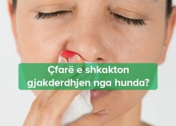 Gjakderdhja nga hunda