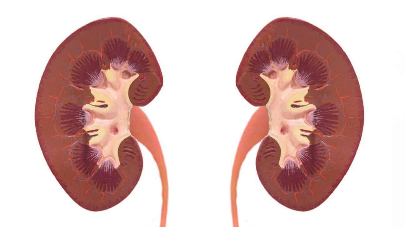 Sëmundja Addison Simptomat, Diagnostifikimi dhe Parandalimi