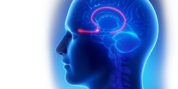 Sëmundja e Parkinsonit