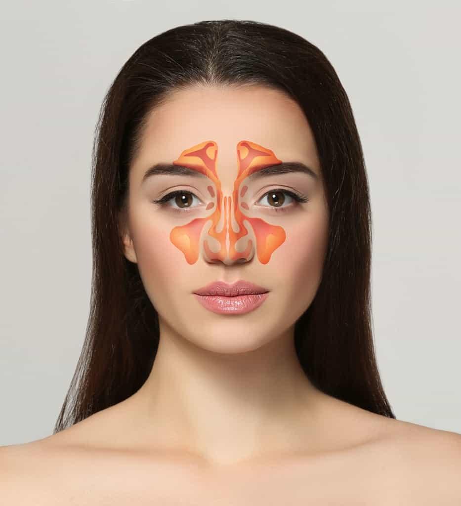 Sinusët