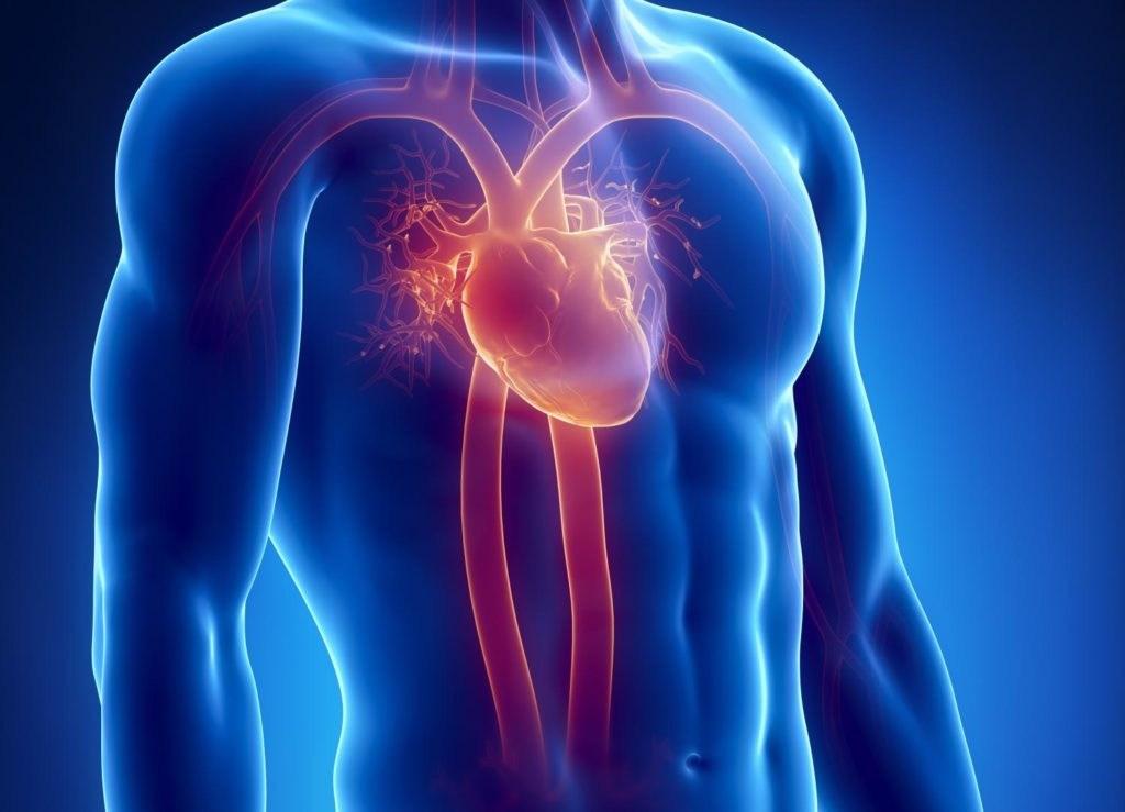 Sulmet e Heshtura të Zemrës