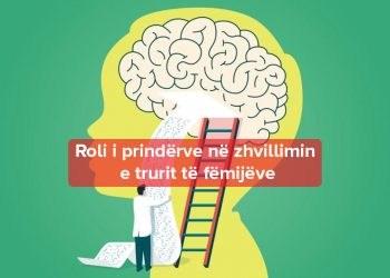 Zhvillimi i trurit