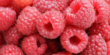 12 Përfitimet shëndetësore të lëngut të mjedrave