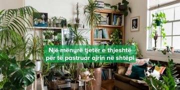 Bimët në shtëpi